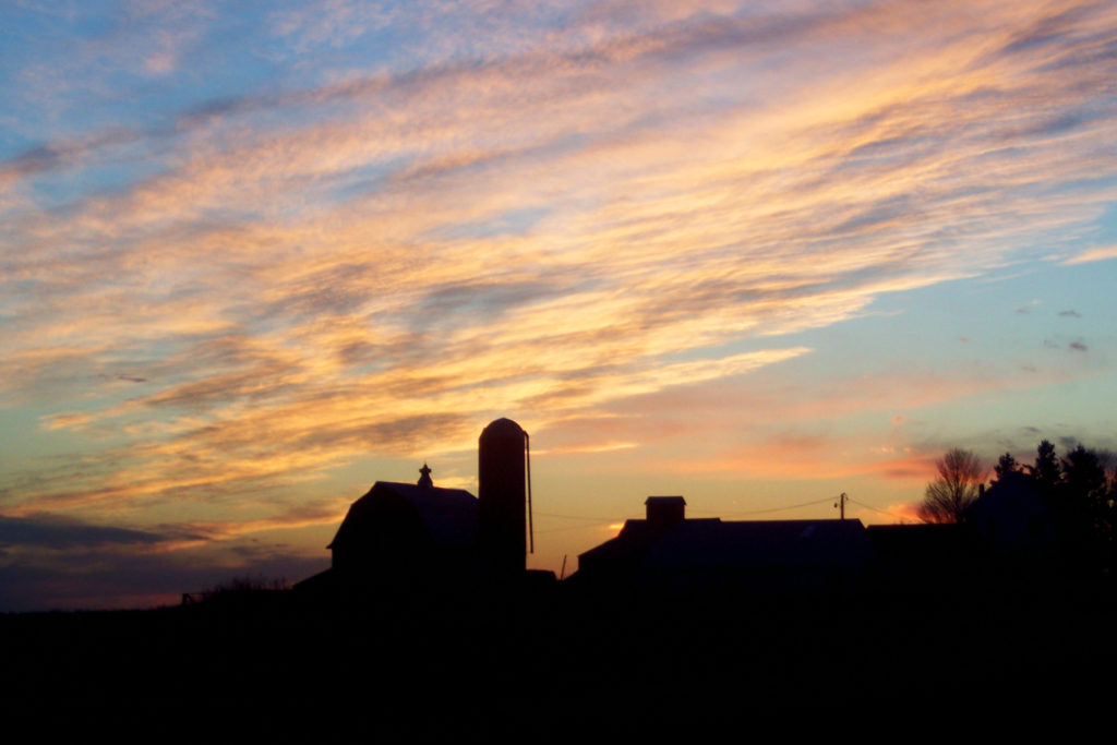 A photograph of a yellow, orange, and blue toned sunset over the silhouetted image of a farm house. The Cirrus and Altocumulus clouds filling the sky are illuminated by the bright sunset in the sky, leaving them a golden yellow color.